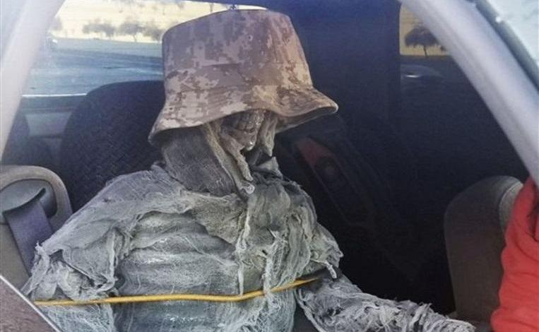 Photo of American took off carpool lane with fake skeleton in front seat
