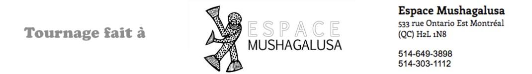 Espace mushagalusa pub