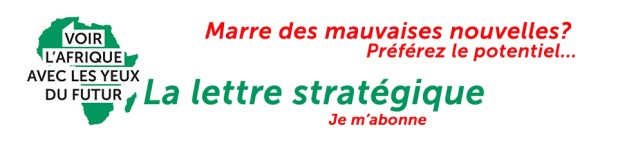 La lettre stratégique Afrique du futur