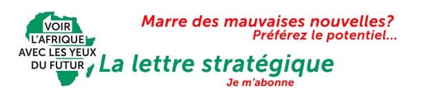 Lettre stratégique Afrique du futur