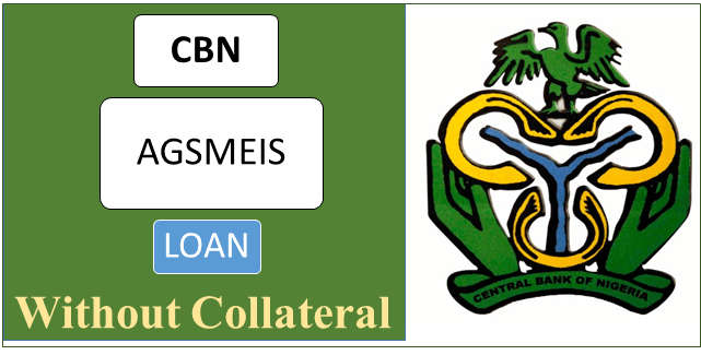 CBN AGSMEIS Loan