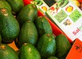 MOSCOW, RUSSIA - SEPTEMBER 17, 2018: Kenyan avocados on display at the WorldFood Moscow 2018 International Food Exhibition at Moscow's Expocentre. Sergei Fadeichev/TASS (Photo by Sergei FadeichevTASS via Getty Images)