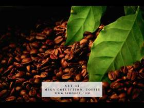 Mega Collection. Coffee #13 - Stock Photo