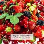 Mega Collection. Fruit #0