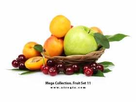 Mega Collection. Fruit #11