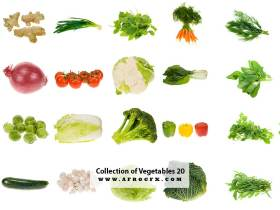 Collection of Vegetables 20