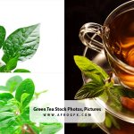 Green Tea Stock Photos, Pictures & Royalty-Free Images