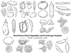 Hand-Drawn Sketch Vegetables and Food Design Template
