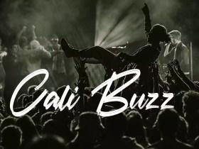 Cali Buzz - No Copyright Audio Library