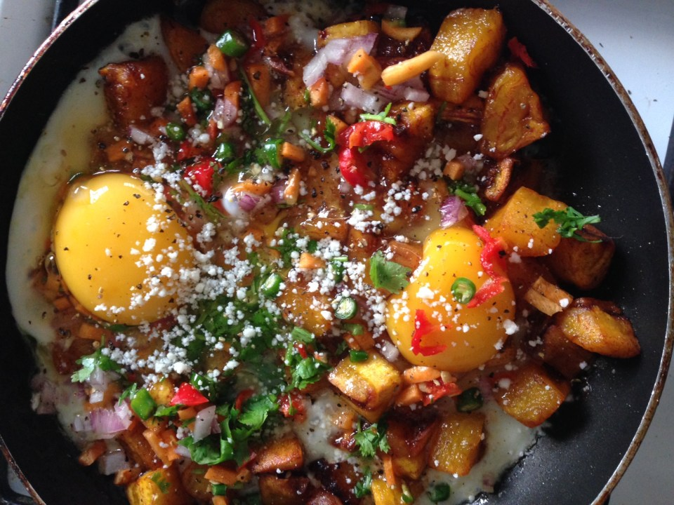 dodo-and-egg-with-vegetables