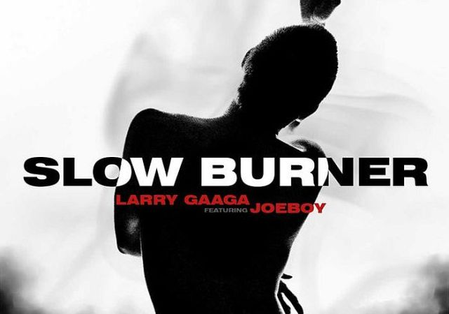 Larry Gaaga Ft. Joeboy - Slow Burner