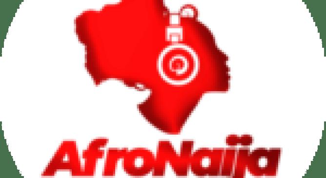 Akpata emerges NBA new President