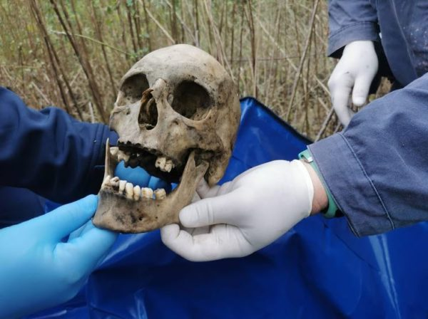 Municipal workers find human skeletal remains near Chatsworth police station