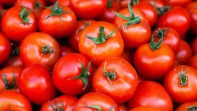 5 surprising health benefits of tomatoes