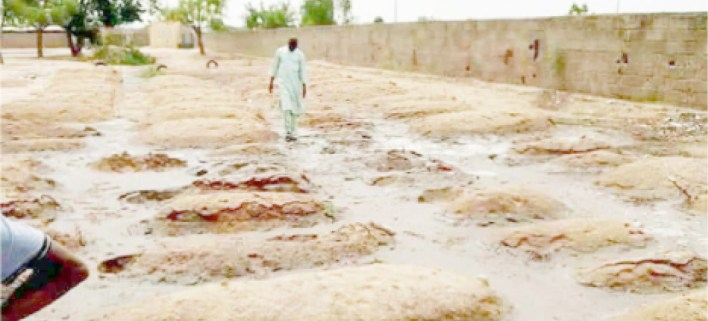 Flood submerges hundreds of graveyards in Damaturu