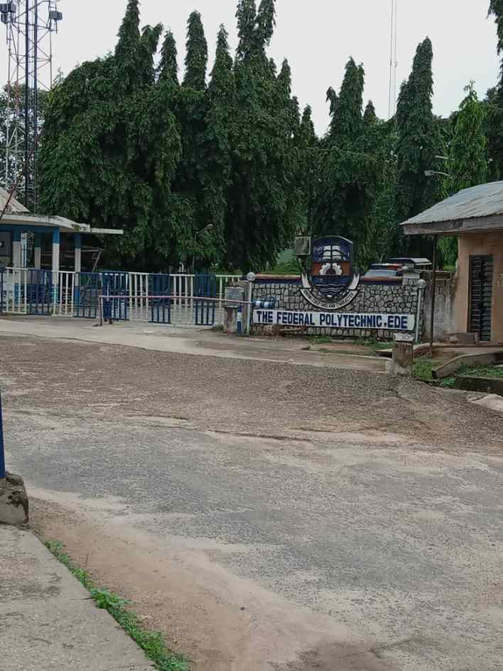 SPECIAL REPORT: Inside Osun Fed. Poly where graduates groan over withheld certificates, say only 'connected' ones get theirs