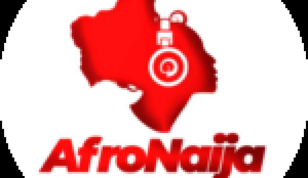 5 surprising health benefits of Oregano