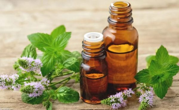 10 incredible uses of peppermint oil for health and skin