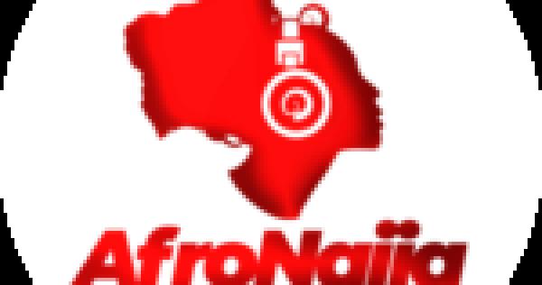 4 healthy foods to eat when sugar cravings strike!