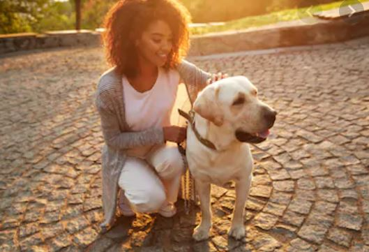 8 things people get to learn from their pets