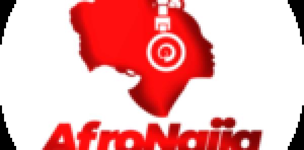 2 Gauteng SAPS station commanders in court for gun license fraud