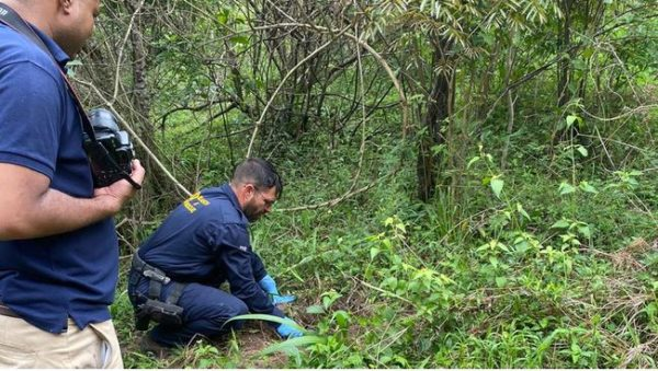 Police discover foetus in a shallow KZN grave