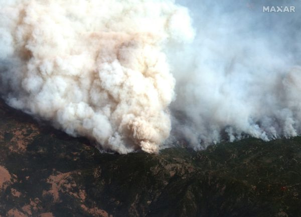 AgriSA calls for help for farmers affected by wildfires in NC, FS