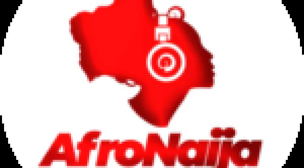 5 impressive benefits of Hibiscus tea