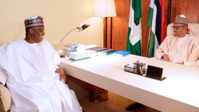Tambuwal Asks Buhari To Withdraw Onochie's Nomination As INEC Commissioner