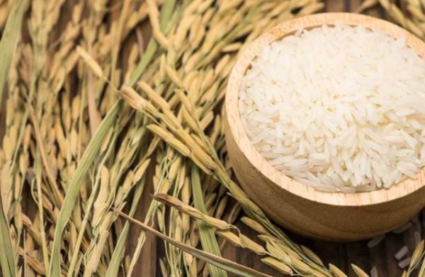 9 impressive health benefits of Basmati rice you should know