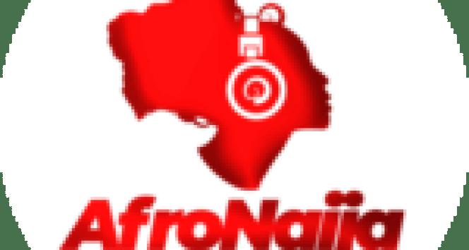 Buhari endorses APC's official monthly magazine