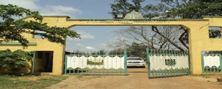 Senate passes Bill for upgrade Ahmadu Bello College of Agriculture Kabba to University status