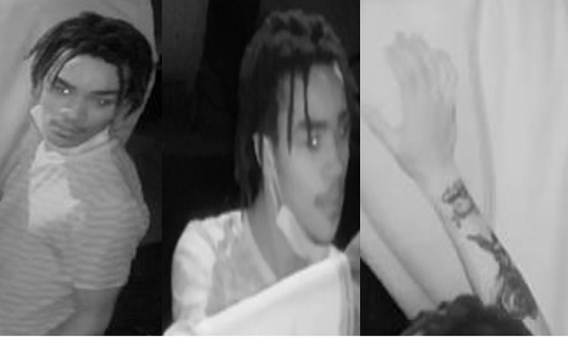 Man declared wanted for sexually assaulting two horses in New Orleans