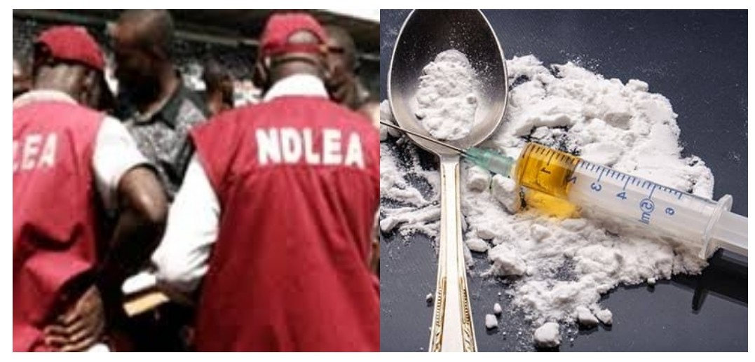 NDLEA arrests 148 suspected drug peddlers and traffickers in Kaduna