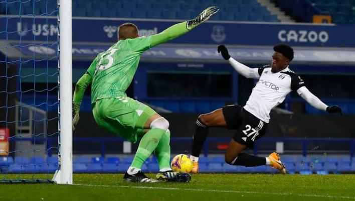 Nigeria's Maja scores brace on Fulham debut