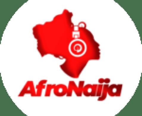 Rasta shares painting of politicians Julius Malema and Jacob Zuma's tea party