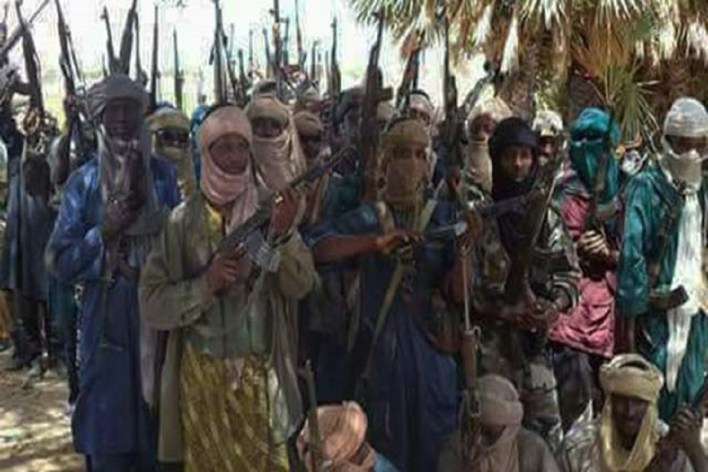 Bandits fake repentance to collect money to purchase weapons – Niger governor