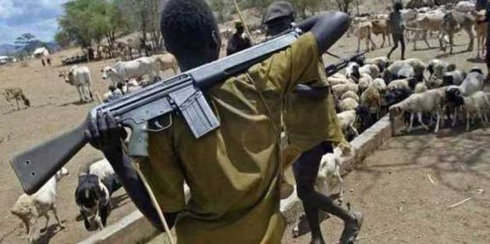 TRENDING: Govt is supplying us with AK-47, cows don't give birth to guns – Herdsmen claims (VIDEO)