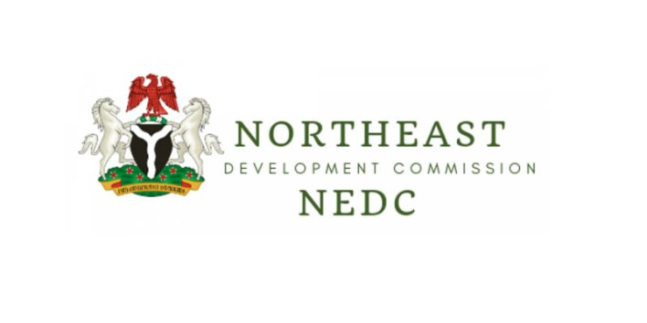 NEDC and Alkali's Leadership with a Human Face
