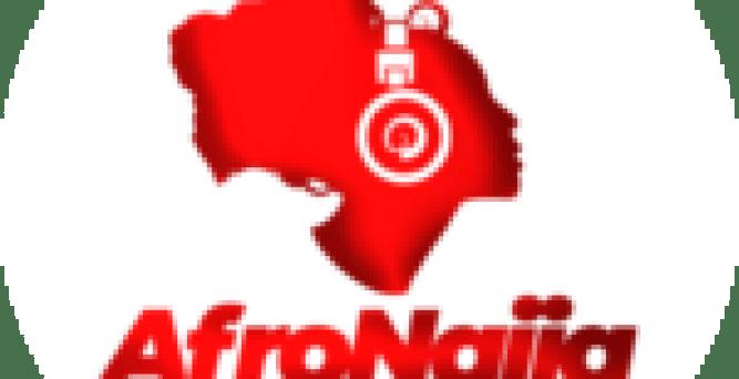 Insurgents attack humanitarian facilities, loot warehouses, raze buildings in Borno