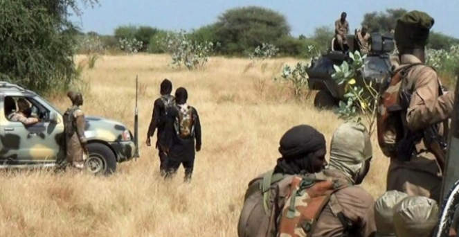 Thousands displaced, scores dead as Boko Haram insurgents sack Geidam in Yobe
