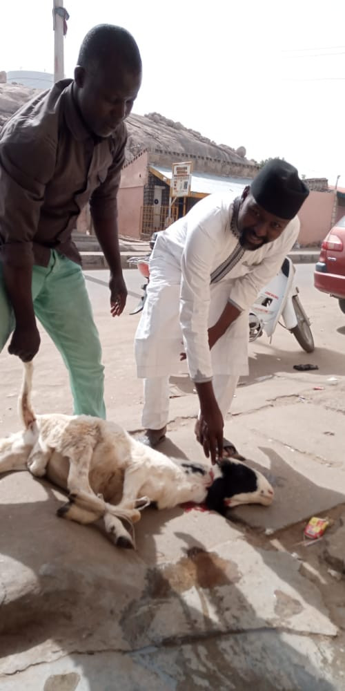 Buhari's supporter throws ram party in Katsina to celebrate his return from UK medical trip