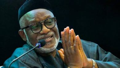 Akeredolu to Ondo residents: Organise vigilantes to protect farms