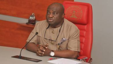 Foreigners invading Nigeria are responsible for killings, says Abia governor