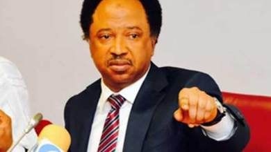 Shehu Sani to Buhari: Call Mbaka and reconcile with him, even Chinese, Arabs are given contracts