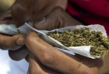 House of Reps set to legalise use of Indian hemp