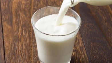 5 reasons why milk is known as a powerhouse beverage