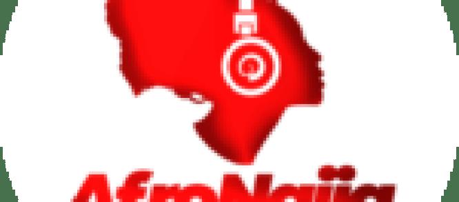 CBN restricts sugar importation to Flour Mills, Dangote, BUA