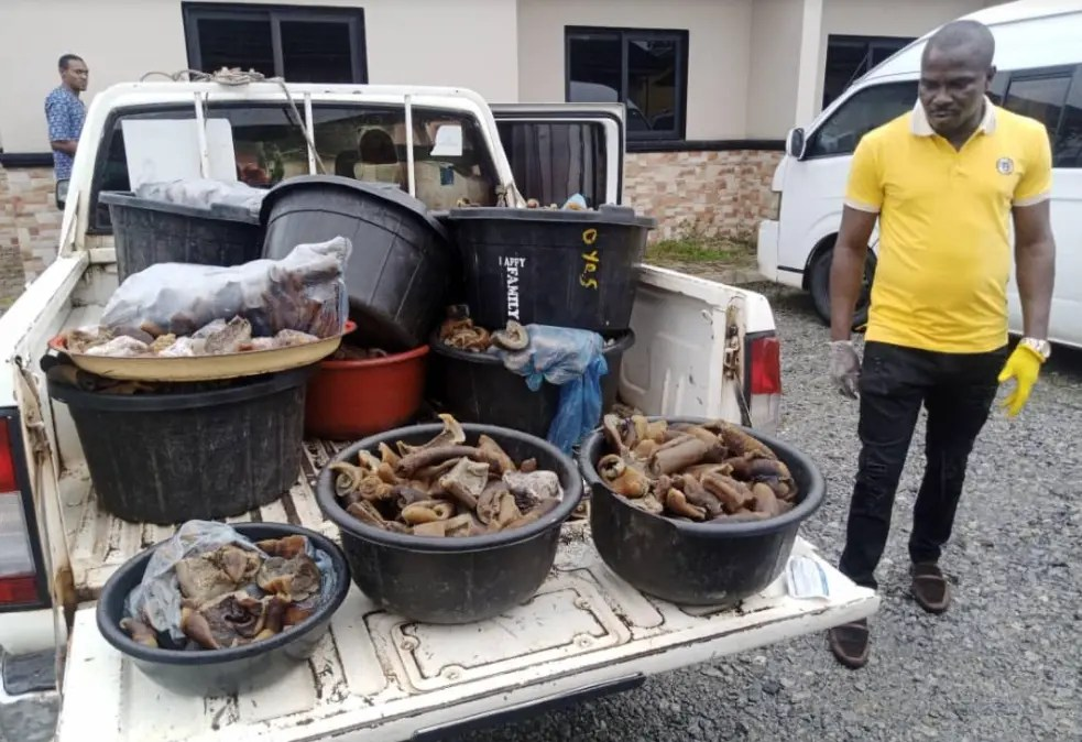 PHOTOS: Edo officials apprehend four for selling donkey meat
