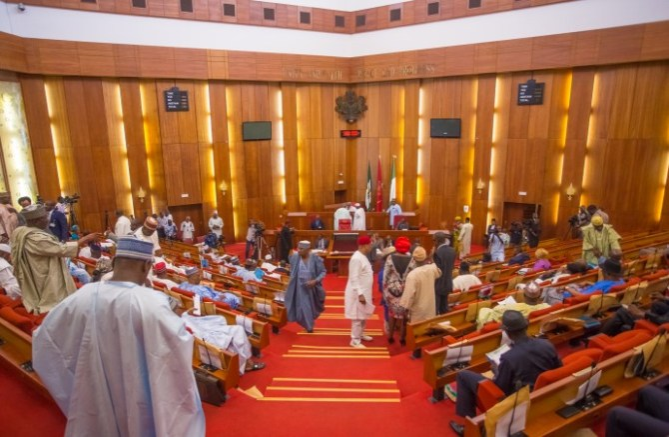 Despite Ajibola and Abaribe's disapproval, senate considers bill protect donkeys